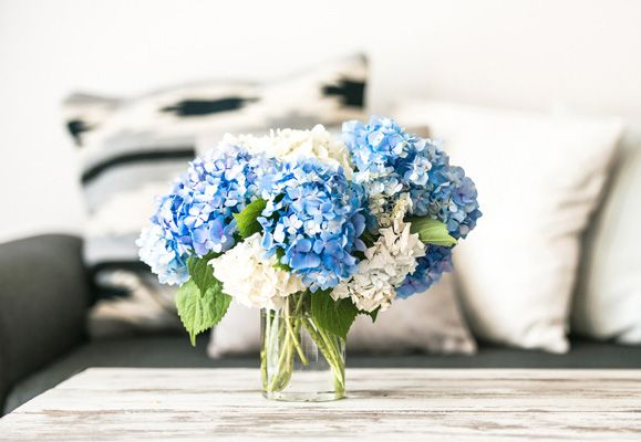 Freshhomes fresh flowers, fresh homes | capitaland