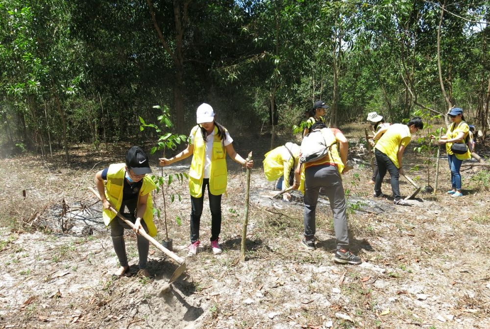 CapitaLand and Ascott join hands to do tree planting
