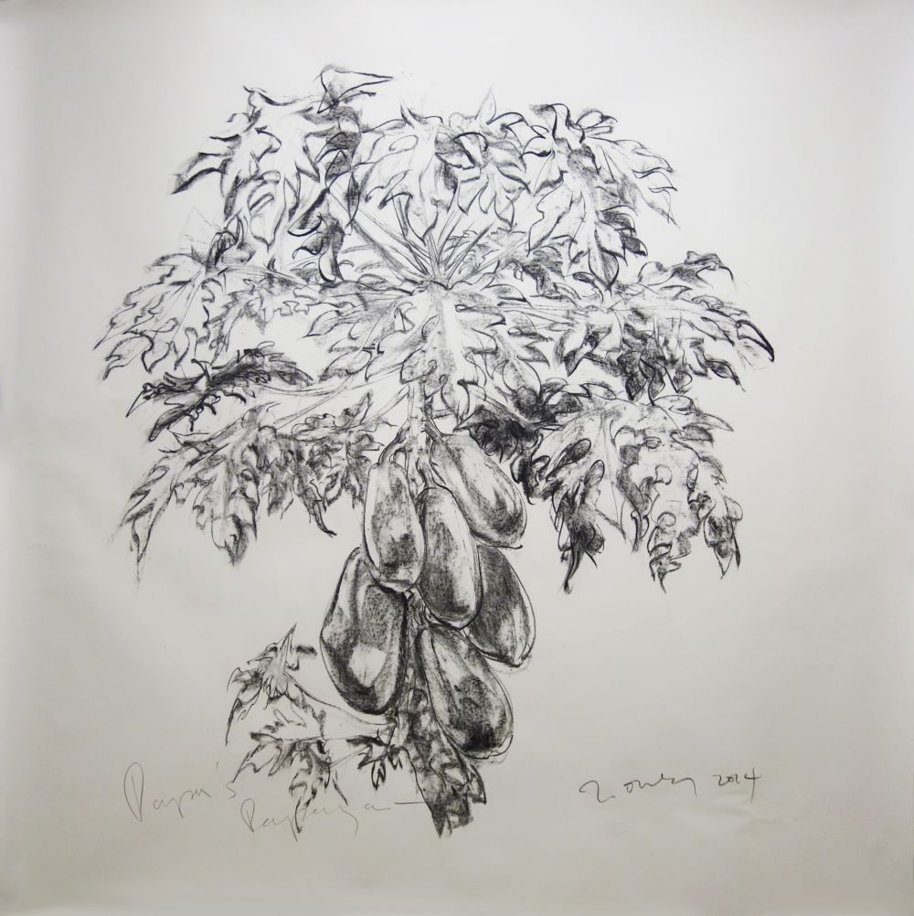 Papa's Papaya (Remembrance of Trees Past, Nassim Hill Atelier)